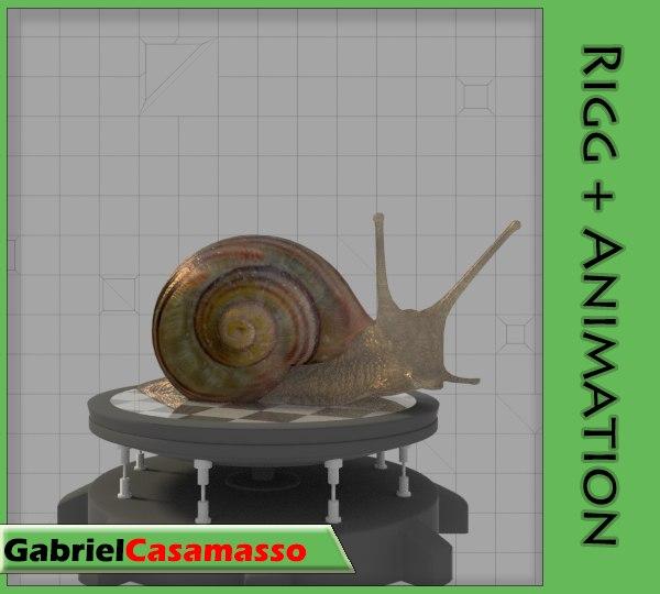 x snail helix aspersa