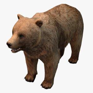 low-poly bear 3d max