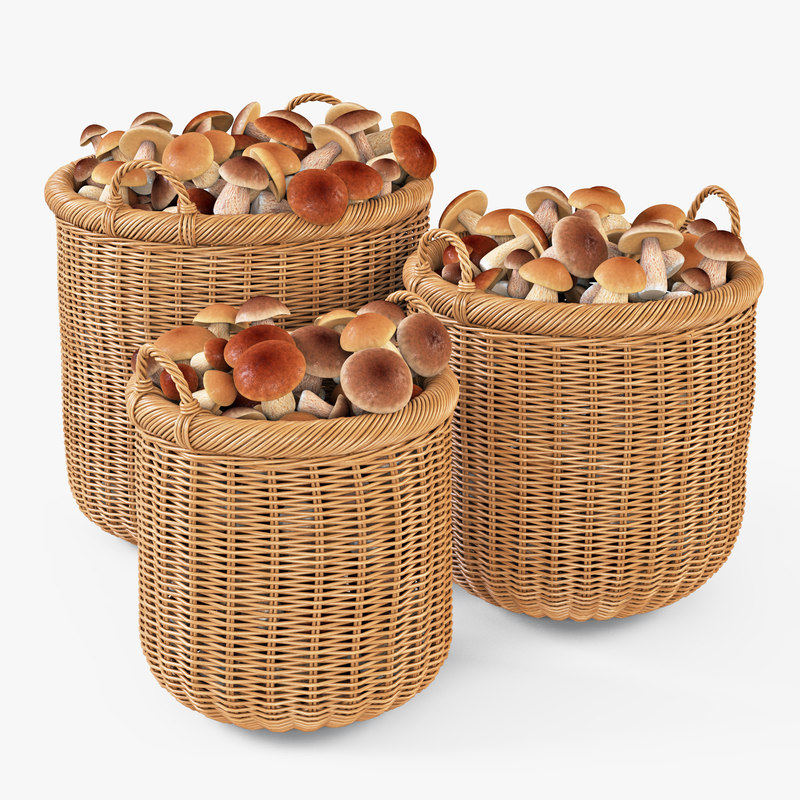 wicker basket mushrooms oat 3d max