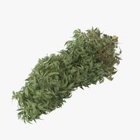 marijuana bud 01 02 3d max