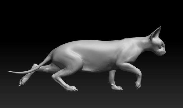 3d model sphynx cat