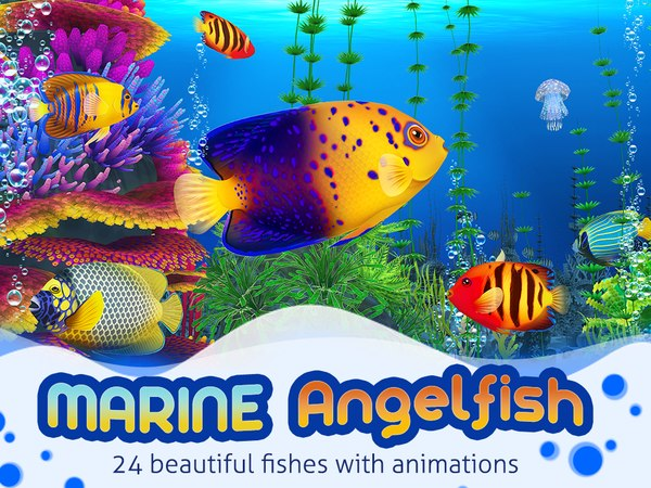 angelfish fish aquarium fbx