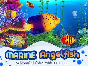 angelfish fish aquarium fbx