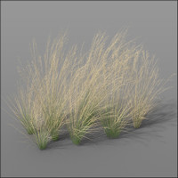 c4d grass dune grass1