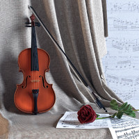 Violin with rose