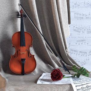 3d model violin rose