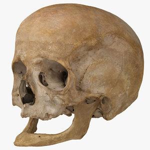 real human skull scan 3d model