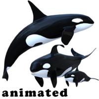 3d killer whale pack