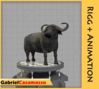 3d model african buffalo