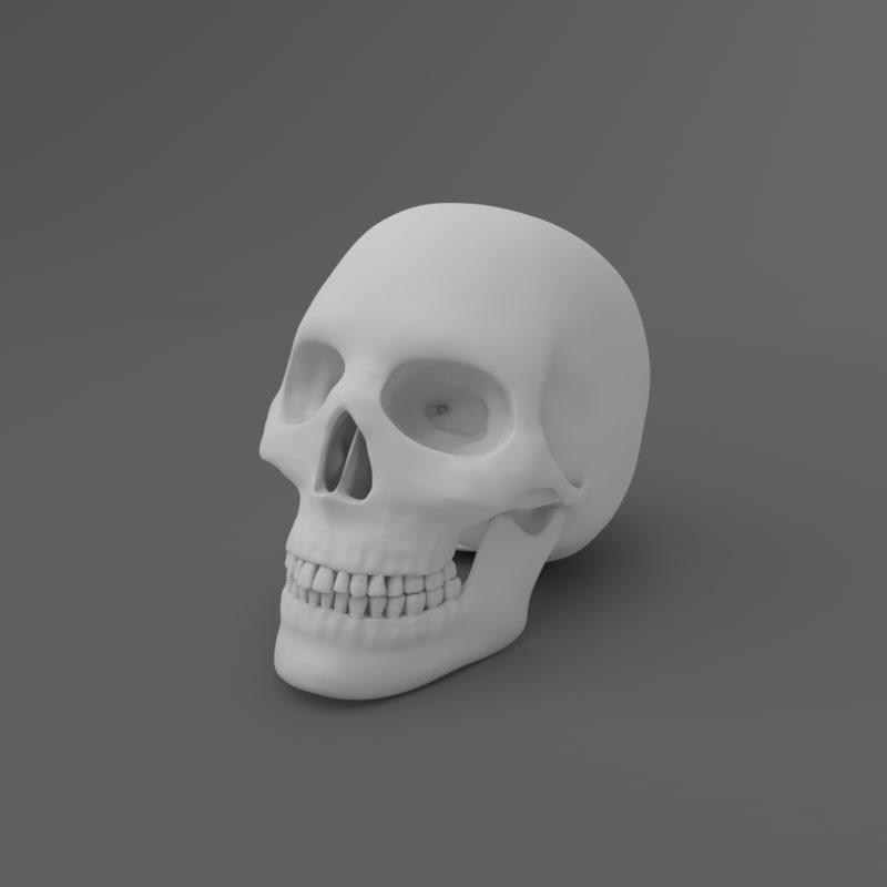 3d model skull blender