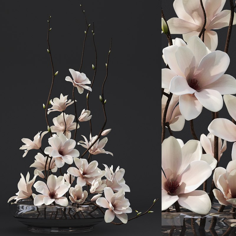 magnolia arrangement max