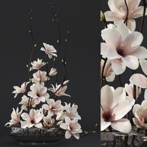 magnolia arrangement max