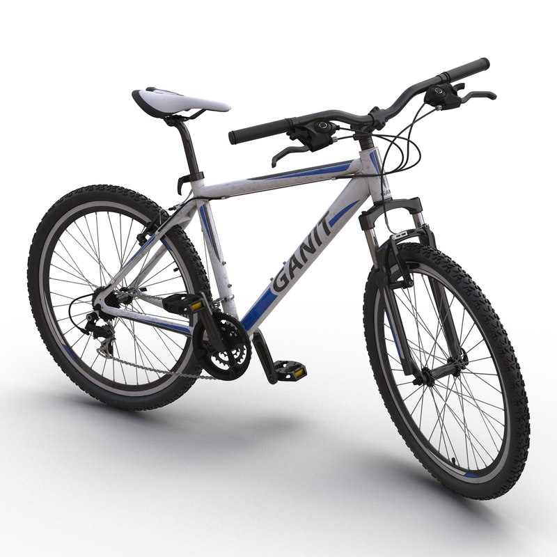 mountain bike rigged max