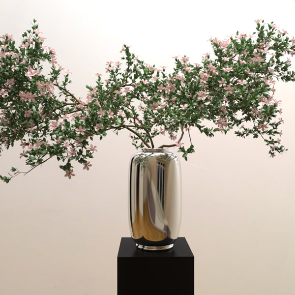 3d branches serrisa