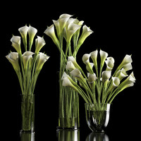 3d model of lilies arranged vase