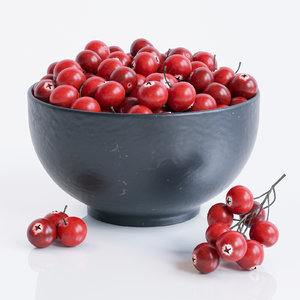 3ds cranberries bowl corona