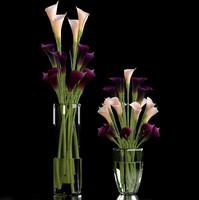 3d calla lilies