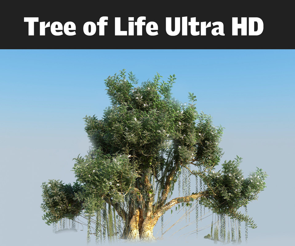 tree life ultra hd 3d model