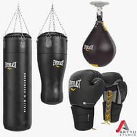 Punching Bag, Boxing Gloves, Set