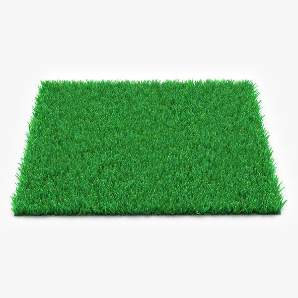3d model kentucky bluegrass grass
