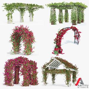3d model of set bougainvillea climbing roses