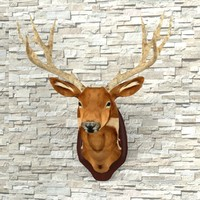 3d taxidermy deer