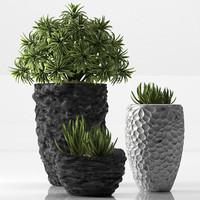 plant set 31 3d model