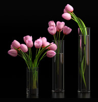 tulips vases 3d max
