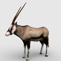 antelope gemsbok max