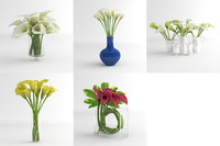 3d calla lily flower model