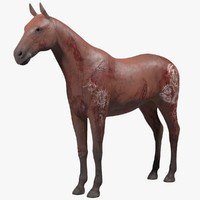 3d wounded brown horse model