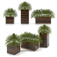 3d planter box plants model