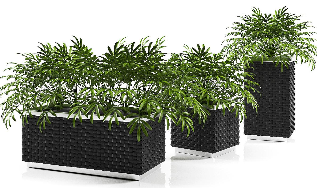 max planter box