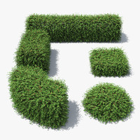 3d cotoneaster hedge berries model
