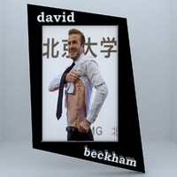 3d frame beckham model