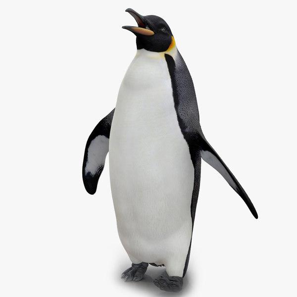 penguin pose 2 max