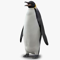 3d model penguin