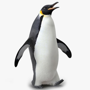 emperor penguin pose 2 3d max