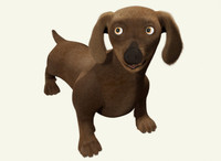Duchshund Dog