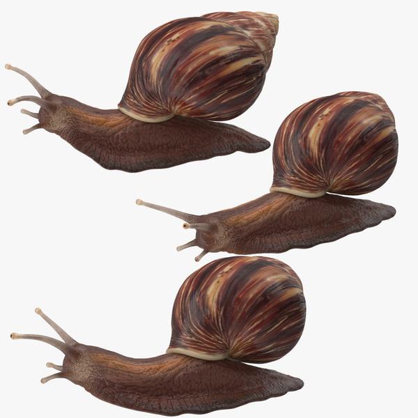 obj snail poses