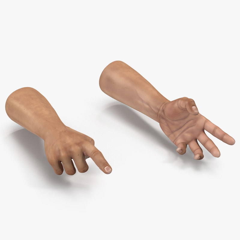 3d man hands rigged model
