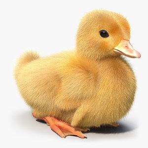 duckling duck 3d max