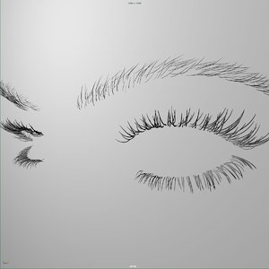 eyelashes eyebrows rig 3d fbx