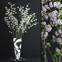 3d vase cherry blossom flowers model
