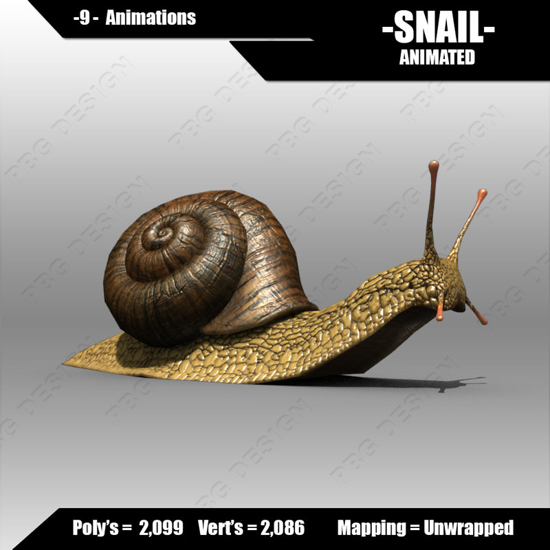 max snail animations