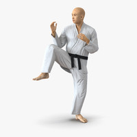 japanese karate fighter pose 3d 3ds