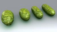 3d model of bacteria bacterium