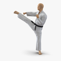 3d japanese karate fighter pose