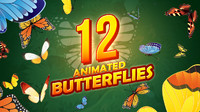 12 Animated Butterflies Pack