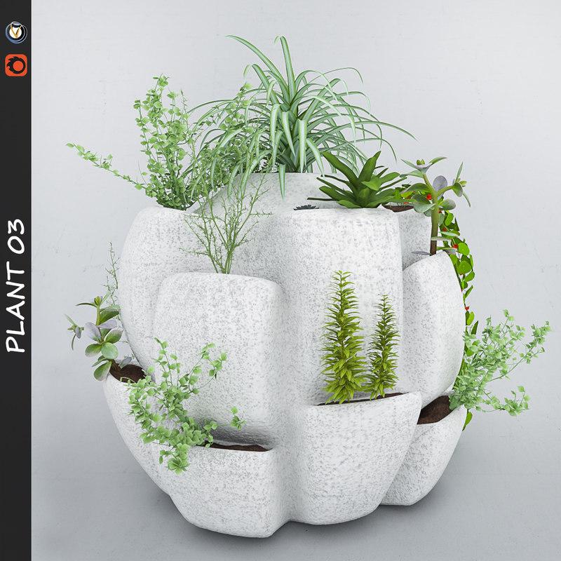 3d plant 3